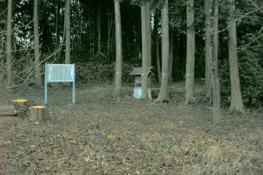 亀山城 本丸跡
