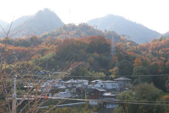 矢野城 遠景