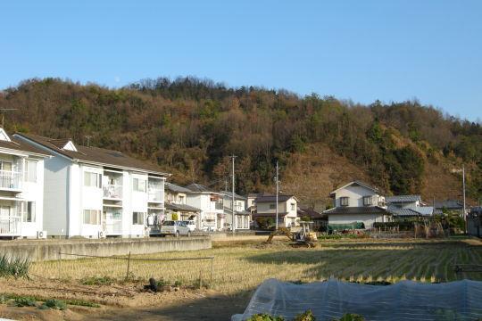 亀寿山城 遠景
