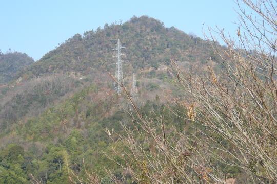 銀山城 遠景