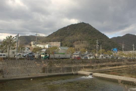 桜山城 遠景