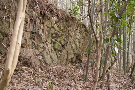 丸子山城 石垣