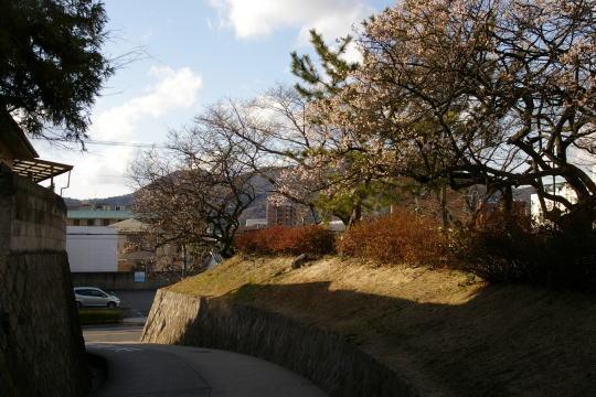 杉迫城 寺迫公園