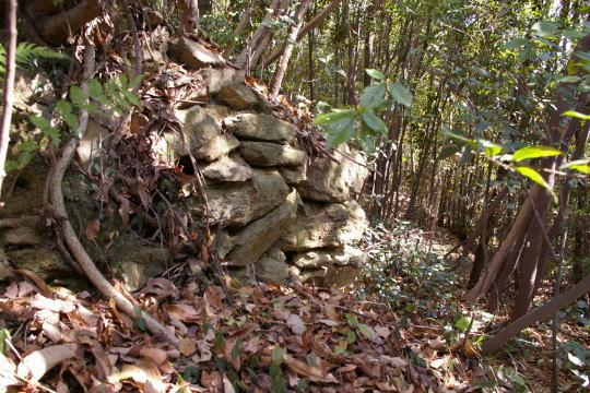 恵下山城 古代住居下の曲輪石垣