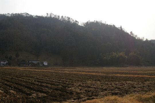 田屋城 遠景