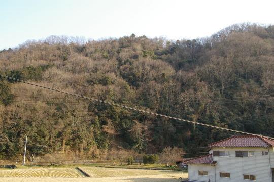 藤ヶ平城 遠景