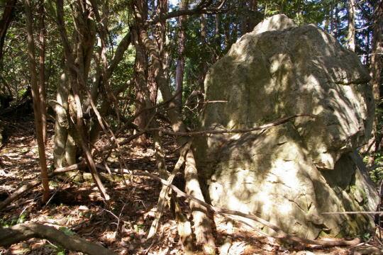 寺原城 北側削平地の大岩