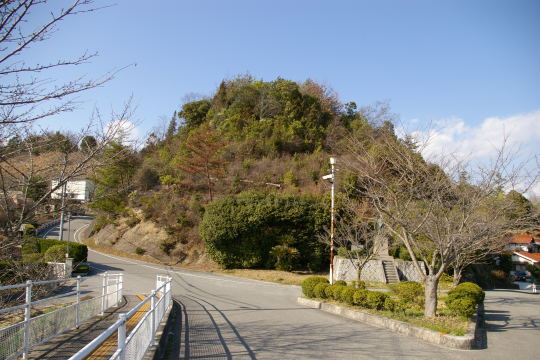 上野城 遠景