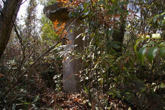 上野城 本丸跡の石灯籠