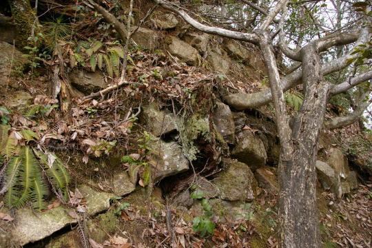 俄々羅尾城 切岸の石垣