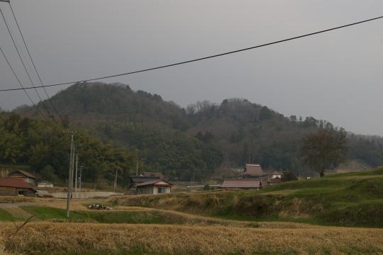 面山城 遠景