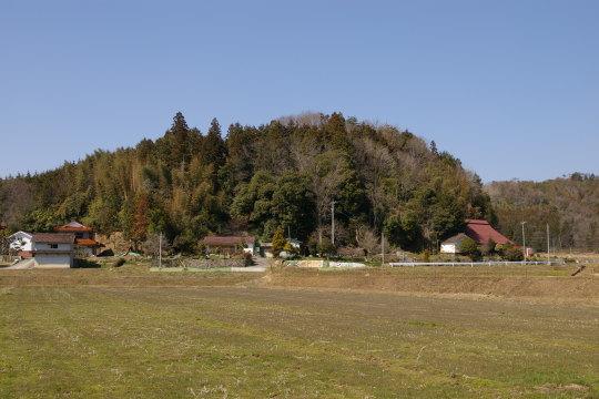 平井城 遠景