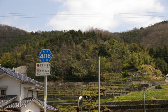 上田城 遠景