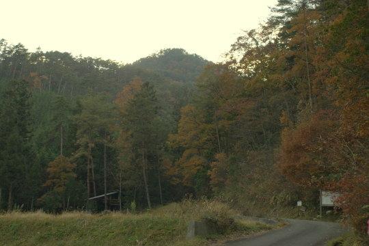 日野山城 遠景