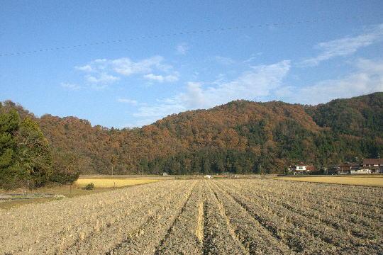 鈴尾城 遠景